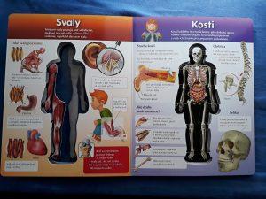 májové čítanie ľudské telo