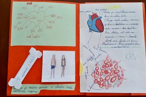 lapbook ľudské telo