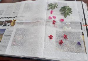 lisovanie kvetov