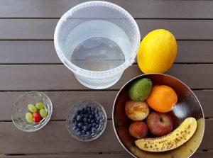 plody, prečítané leto, rastliny