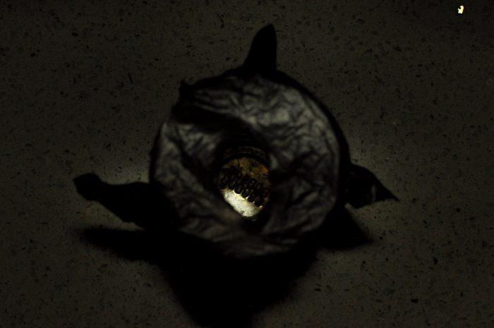 prečo mačkám v tme svietia oči