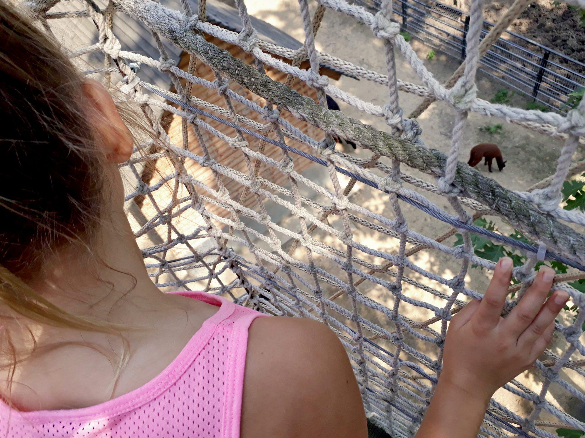 zoo nyíregyháza
